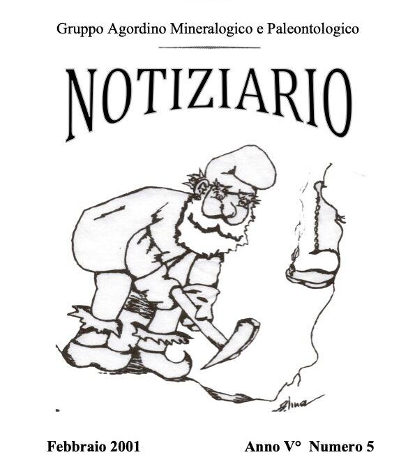 NOTIZIARIO N. 5