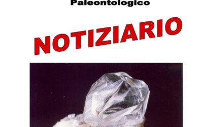 NOTIZIARIO N. 6